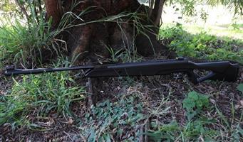 Beemann Longhorn Air rifle NEW