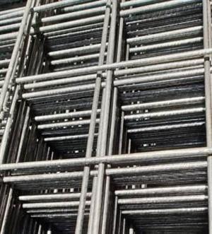 Weldmesh panels 2.4m x 1.2m (Specimesh)
