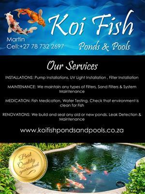 Koi Fish Ponds and Pools