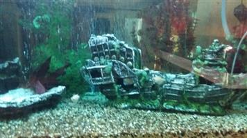 4 fish tanks for sale different  sizes