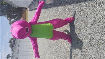 BARNEY MASCOT COSTUME FOR SALE