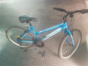 Mountain bicycle for sales