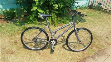 Nishiki mountain bike
