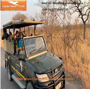 Luxury Safari Tour South Africa & Luxury Safari Tour Operators Affordable Best Packages