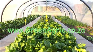 Only ONE WEEK left to ensure delivery of your GreenAgric Tunnels before Christmas ...