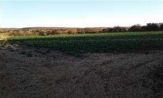 Farm for Sale Bargain R 920 000 Vat incl