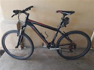 Silverback Stride 20 Large for sale