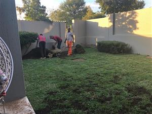 Top quality instant lawn supplied and installed all types. Compost Topsoil Lawn dressing