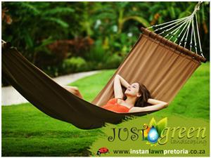 Grass / Instant Lawn Pretoria