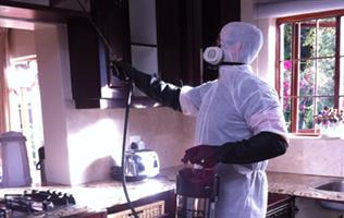 LOOKING FOR PEST CONTROL SPECIALIST? WE ARE HERE
