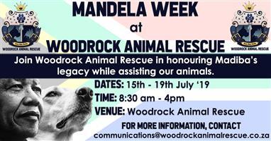 Mandela Week at Woodrock Animal Rescue
