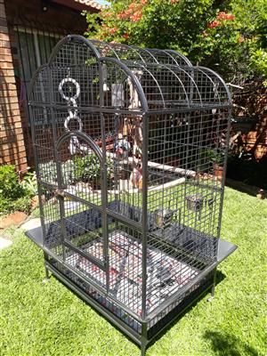 Large African Grey cage for sale.