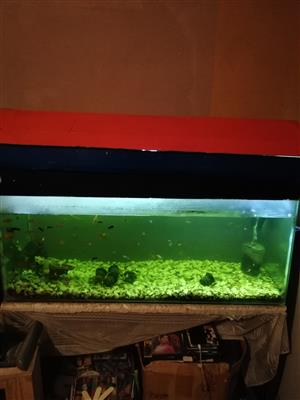 1.2 mtr fish tank for sale