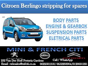 Electrical parts On Big Special for Citroen DS3 & Berlingo