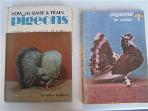 How to Raise and Train Pigeons Hardcover –by Allen, William H., Jr. (Author) - & Pigeons in Color