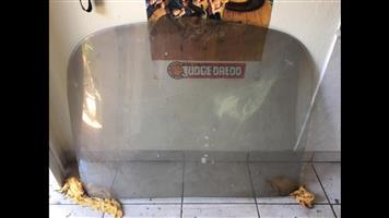 Barracuda rear window