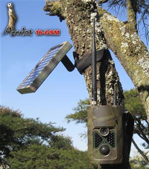 Meerkat wildlife trail camera - 16 Mp, GSM, SMS remote control, time lapse, solar