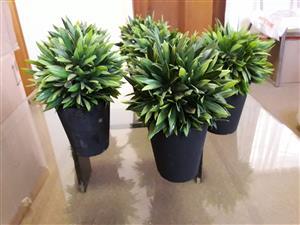 Pot plants artificial