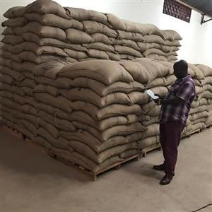 Burundi Single Origin Green Coffee Beans For Sale