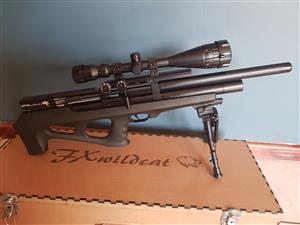 FX Wildcat 5 5mm  22 PCP | Junk Mail