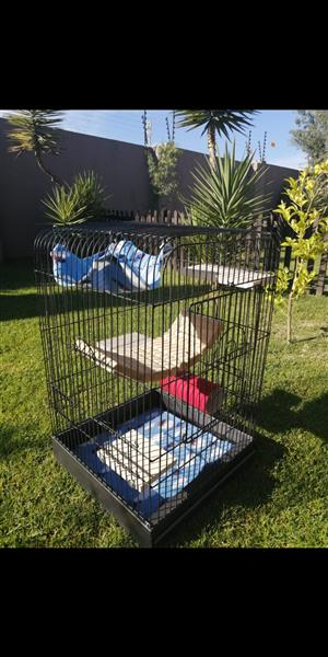 Budget cages for Chinchillas