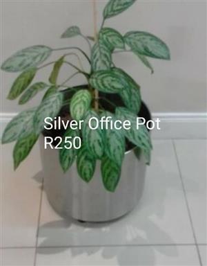 Silver Office plant pot.