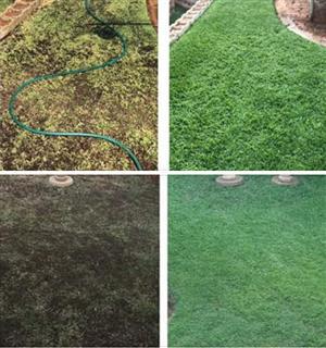 Gardening Composts
