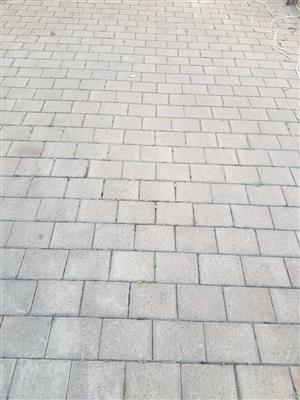 CONCRETE PAVING BRICKS 1000SQM