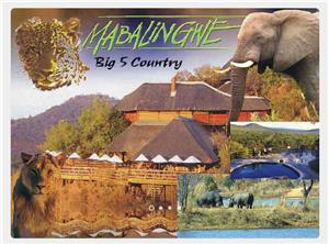 Mabalingwe-Bushveld Luxury. Peak week in Gold Crown Resort. Reload Relax &  Enjoy!