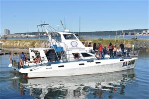 Luxury Boat cruises BOAT RIDES Whale watching