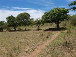 Vacant land and investment opportunity for sale