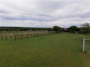 Horse/Pony stabling available on 8.5 Hectare small holding