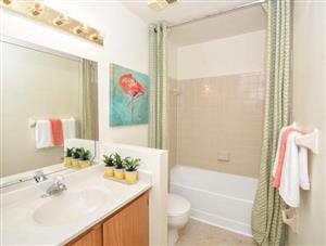 1 Bedroom Flat to rent in Brummeria (Pretoria East)