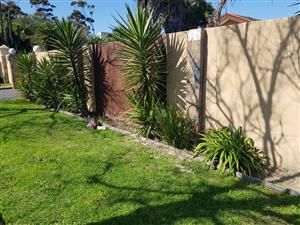 Large , 5 Bedroom house to let in Durbanville