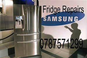 Fridges And Washing Machine Repairs