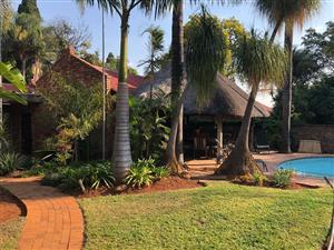 Bachelor garden studio to rent (price all inclusive)
