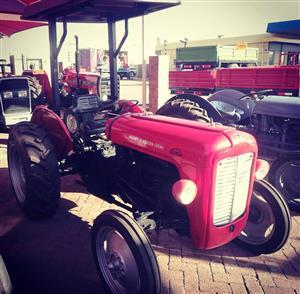 Massey Ferguson 35X Petrol