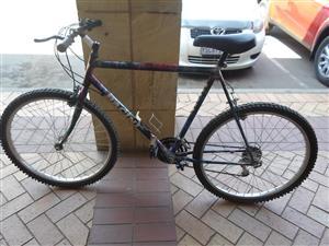 Bacini 18 Speed Bicycle