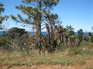 Vacant Land with Distant Panoramic Sea Views for sale in Port Edward