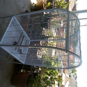 large cage  for african grey