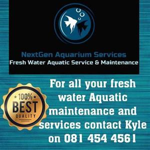 Aquarium service and maintenance