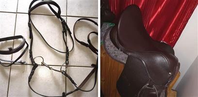Horse ridding equipment