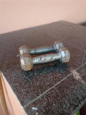 2 Steel lightweight dumbbells