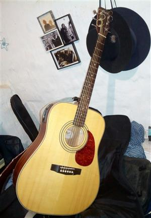 Guitar, Acoustic electric