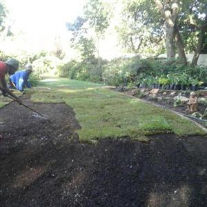 Best quality instant lawn supplied and installed. Top quality Compost, Topsoil, Lawn dressing available.
