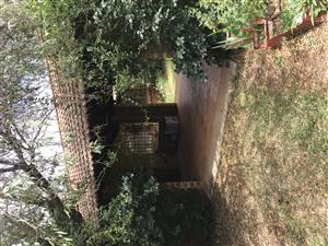 2 Hectare Plot/smallholding PTA East, 65 Guineafowl Crescent (REDUCED)