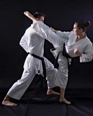 private mixed martial arts classes