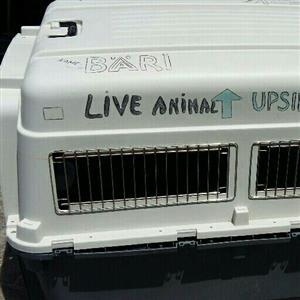 Dog Transport Box XXXL