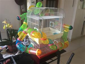 Hamster cages and tunnels