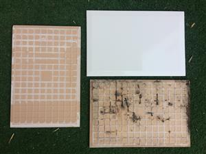 Ceramic wall tiles to clear